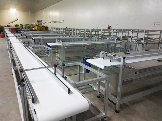 LINES AND INTEGRATED PRODUCTION UNITS<br />Production line